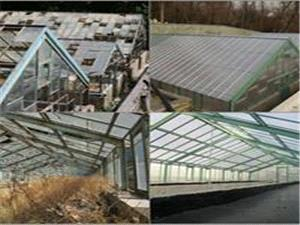 عملیات احیا و مرمت گلخانههای مجموعه نیاوران در حال انجام است