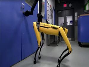 ربات های بوستون داینامیکس حالا می توانند در را برای دوستان خود نگه دارند
