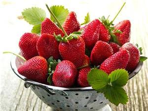 توت فرنگی در صدر فهرست میوه های آلوده به آفت کش