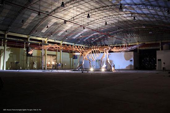 کشف بزرگترین دایناسوری که پا به زمین گذاشته است