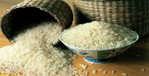 قیمت زنده برنج