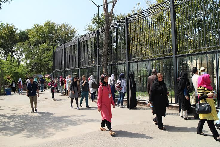 جلوه شکوهمندي ايراني در حضور دانشجوياني از 5 قاره