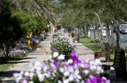 شرکت عمران، آب و خدمات کيش آماده استقبال از گردشگران جشنواره تابستاني