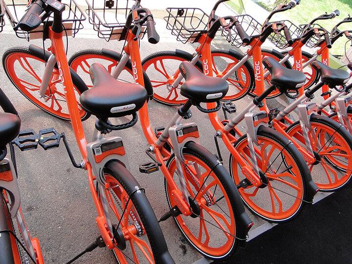 آغاز ارائه کارت دوچرخه اشتراکی رایگان به دانشآموزان